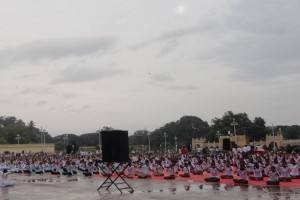 Yoga day-21 Jun2015-5